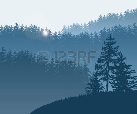 325 Redwood Stock Vector Illustration And Royalty Free Redwood Clipart.