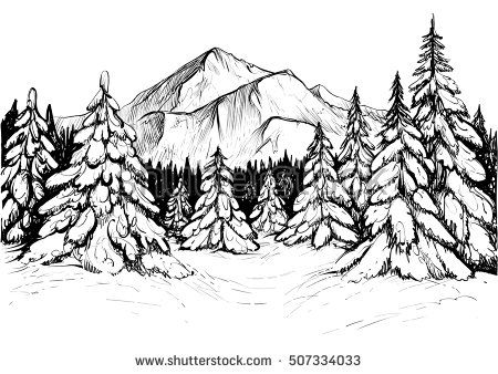 Winter forest sketch. Black and white vector illustration of.