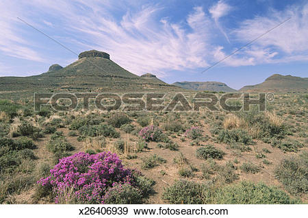 Stock Photograph of South Africa, Northern Cape Province, Great.