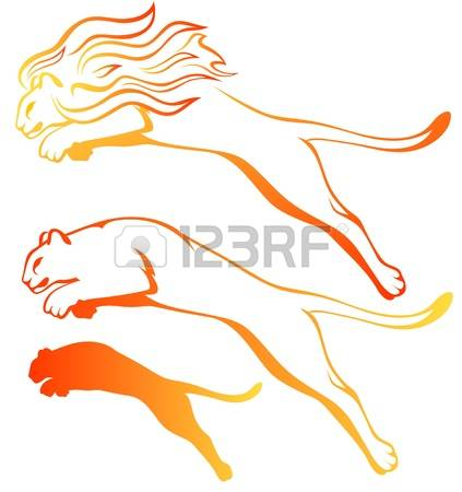 660 Mountain Lions Stock Vector Illustration And Royalty Free.