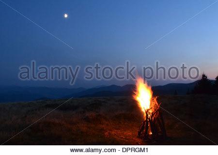 Stick Tree Bonfire Night Orange Grass Campfire Light Smoke Moon.