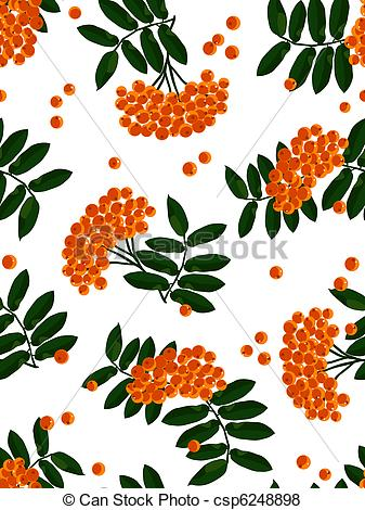 Vector of Mountain ash seamless background. Vector illustration.