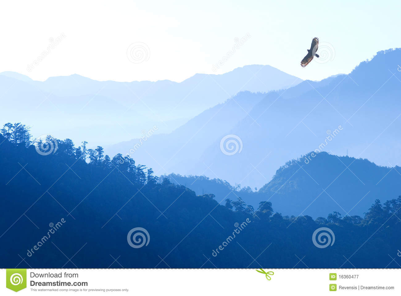 Eagle Flying Over Mist Mountains Royalty Free Stock Photography.