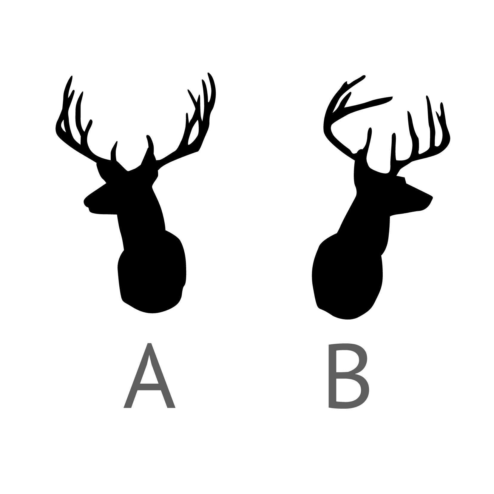 Silhouette Of Deer Head.