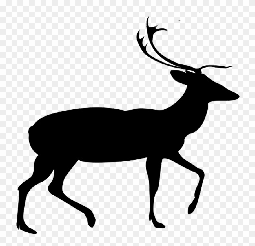 Vector Free Library Buck And Doe Clipart.