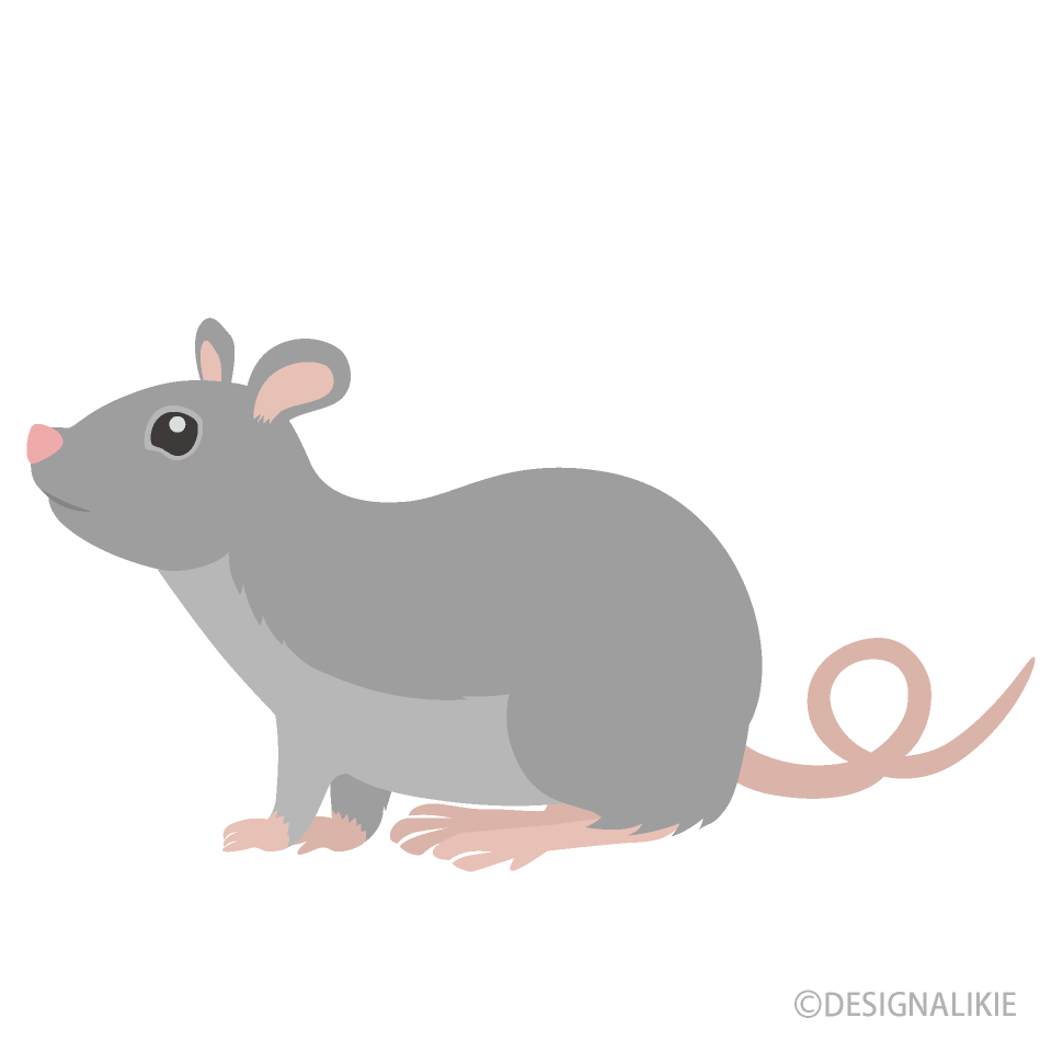 Free Mouse Clipart Image|Illustoon.