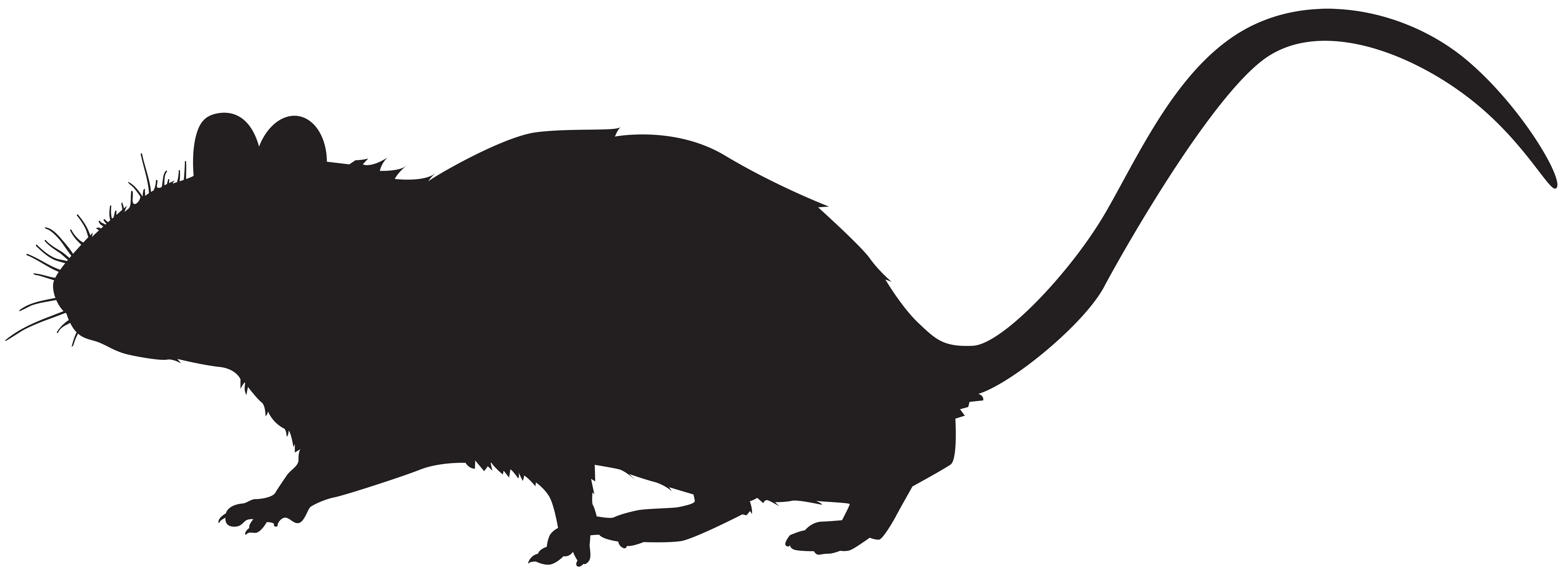 Mouse Silhouette PNG Clip Art Image.