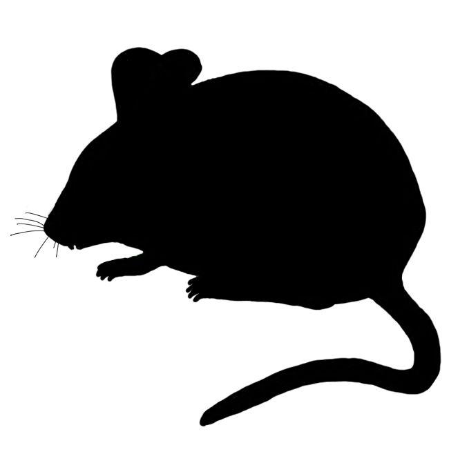 Mouse Silhouette Clip Art.