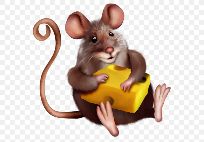 Mouse Macaroni And Cheese Clip Art, PNG, 600x570px, Mouse.