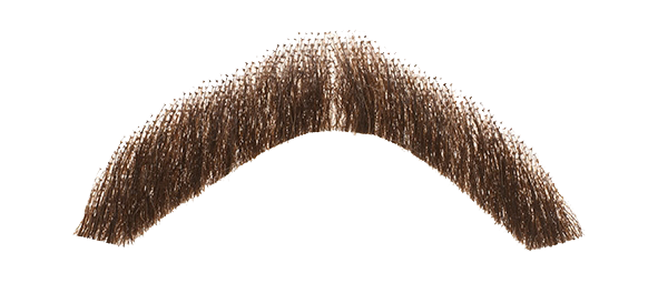 Moustache PNG Transparent Images.