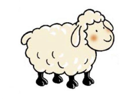 mouton.