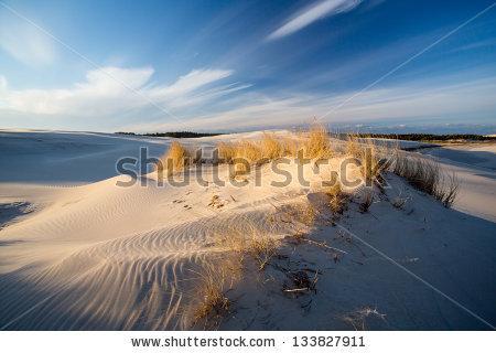 Marcin Niemiec's Portfolio on Shutterstock.