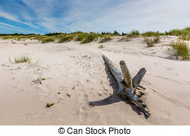 Stock Photography of Moving dunes park near Baltic Sea in Leba.