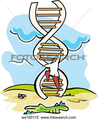 Stock Photo of Scientist moving up on a DNA ladder we120172.