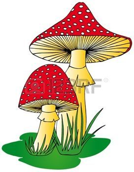 1000+ images about paddestoelen on Pinterest.