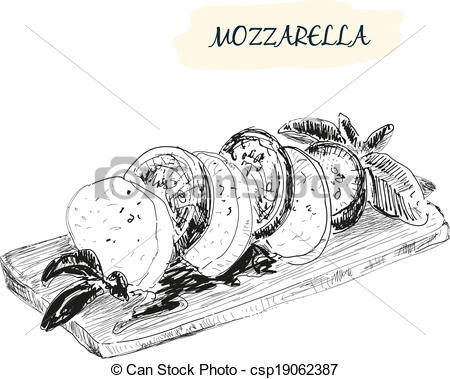 Vector of Mozzarella. Hand drawn illustration. Grahpic still life.
