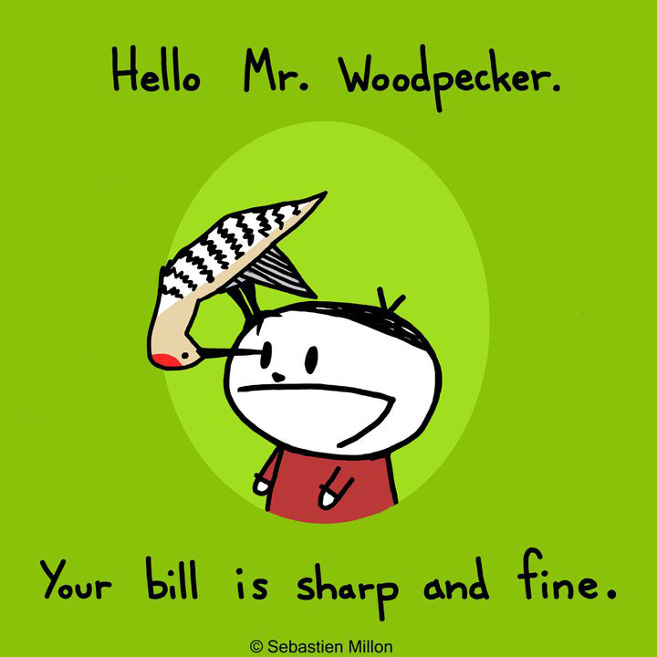 Mr. Woodpecker.