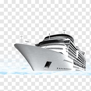 Msc cutout PNG & clipart images.