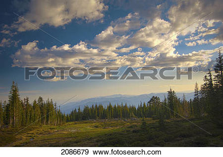 Stock Photograph of View of panther meadows on mount shasta at.