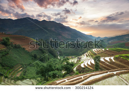 Mu Cang Chai Stock Photos, Royalty.