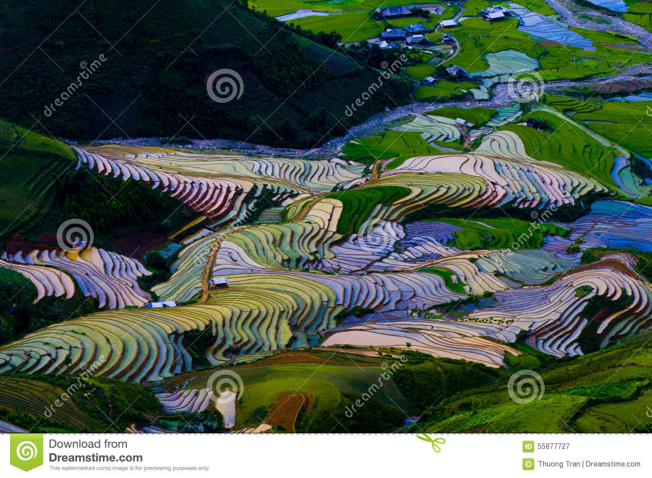 Beautiful Terraced Rice Field In Mu Cang Chai, Vietnam Stock Photo.