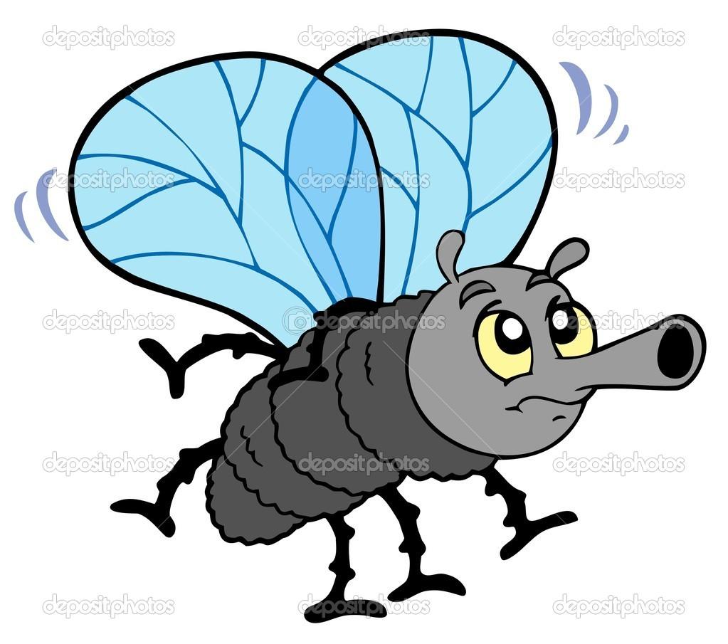 Kreskówka mucha — Grafika wektorowa © clairev #3946965.