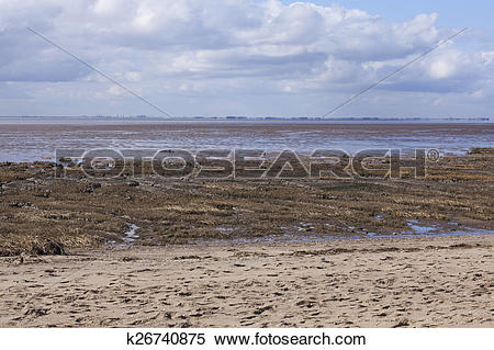 Stock Image of Mud flats at low tide, Spurn Point Nature Reserve.
