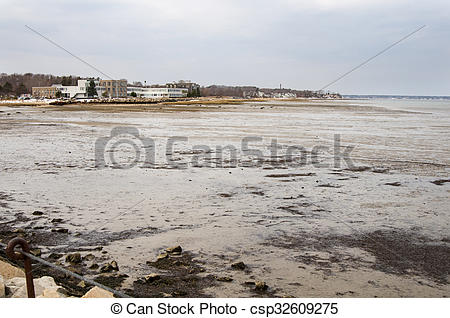 Picture of Mudflats in Plymouth Harbor.
