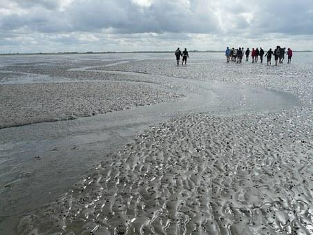 Wadden, Sea.