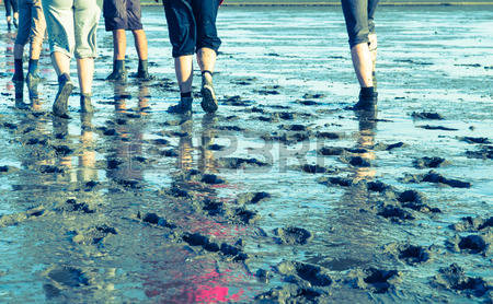 Mud Flat Hiking Stock Photos & Pictures. 97 Royalty Free Mud Flat.