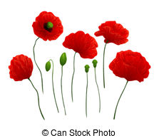 Poppies Images and Stock Photos. 46,666 Poppies photography and.