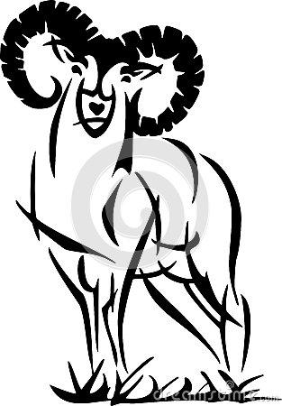 Mouflon Ram Stock Illustrations.
