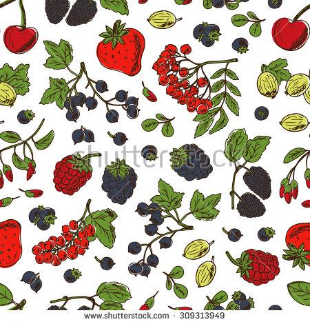 Blackberry Berry Stock Vectors, Images & Vector Art.