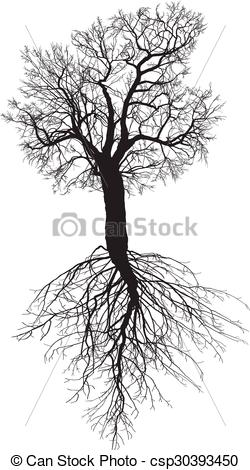 Clipart Vector of Mulberry tree without leaves with r.
