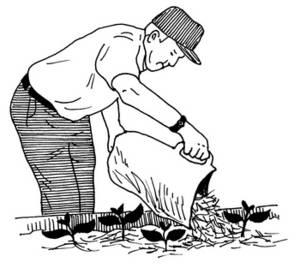 Mulching Clipart.