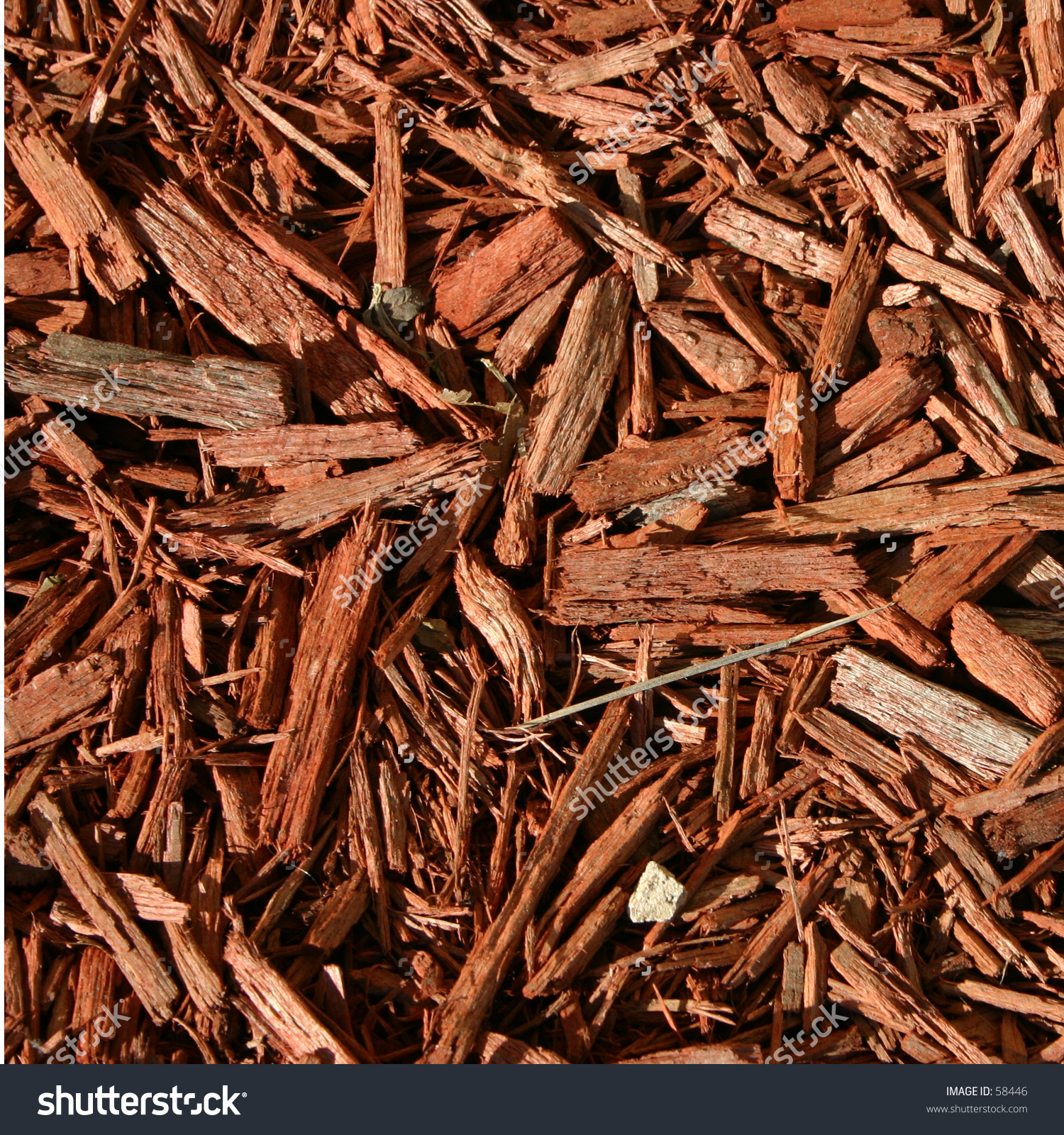 Redwood Mulch Stock Photo 58446 : Shutterstock.