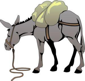 Cartoon Mule.