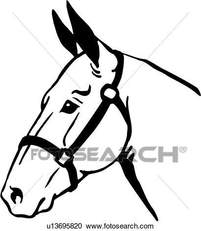 , animal, mule head, Clipart.