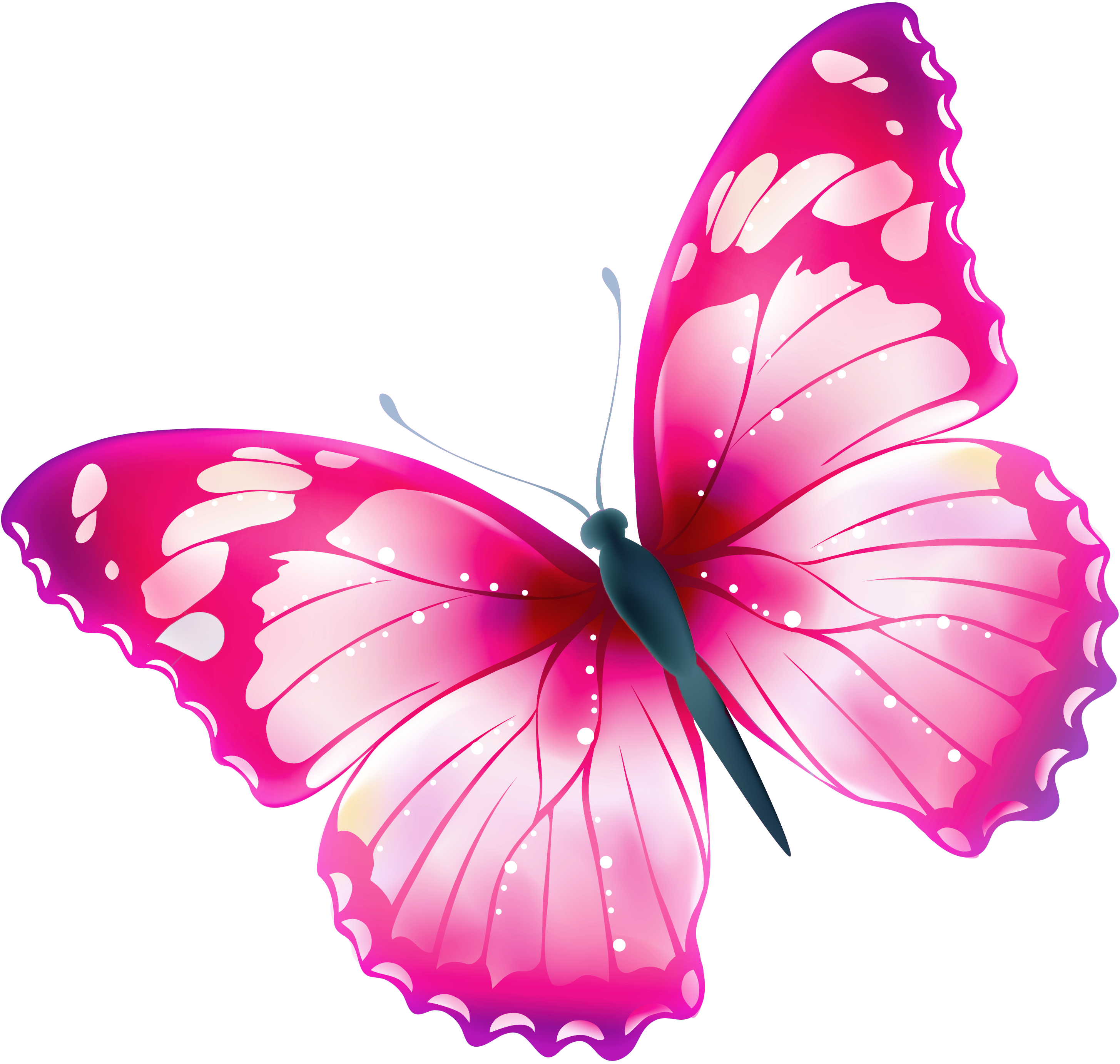 Large Transparent Multi Color Butterfly PNG Clipart.