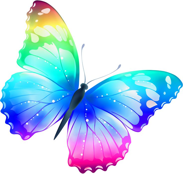 Multi Colored Butterfly Heart Clipart.