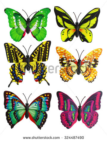 Butterfly Color Green Stock Photos, Royalty.