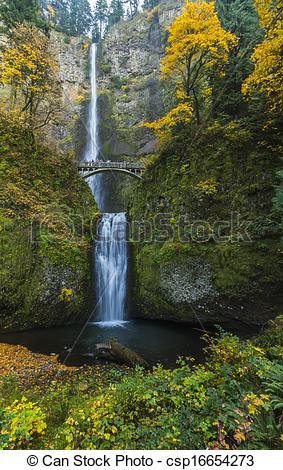 Picture of Multnomah Falls.