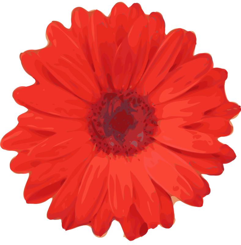 Free Clip Art Flowers Mums.