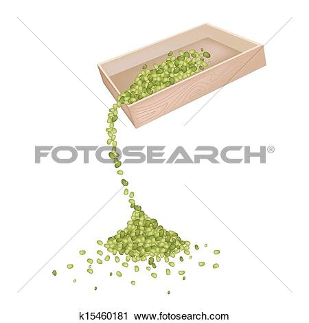 Clipart of Mung Beans Dropped from A Wooden Container k15460181.