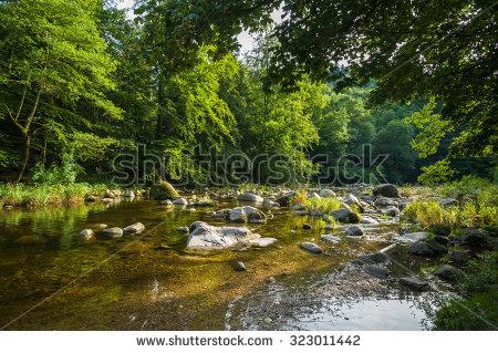 Juergen Wackenhut's Portfolio on Shutterstock.
