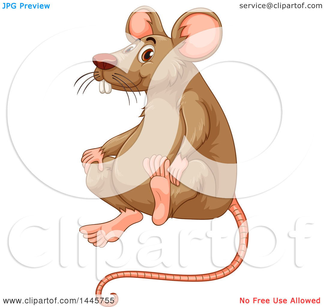 Clipart of a Brown Rat Sitting.
