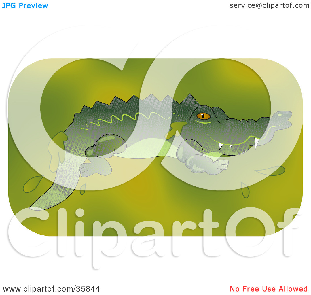 Clipart Illustration of a Gator Swimming In A Murky Green Pond by.