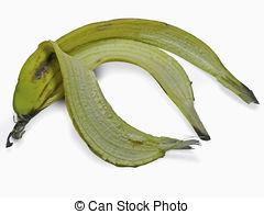 Stock Photo of Musa paradisiaca.