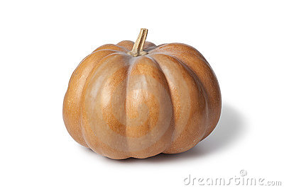 Muscat De Provence Pumpkin Stock Image.