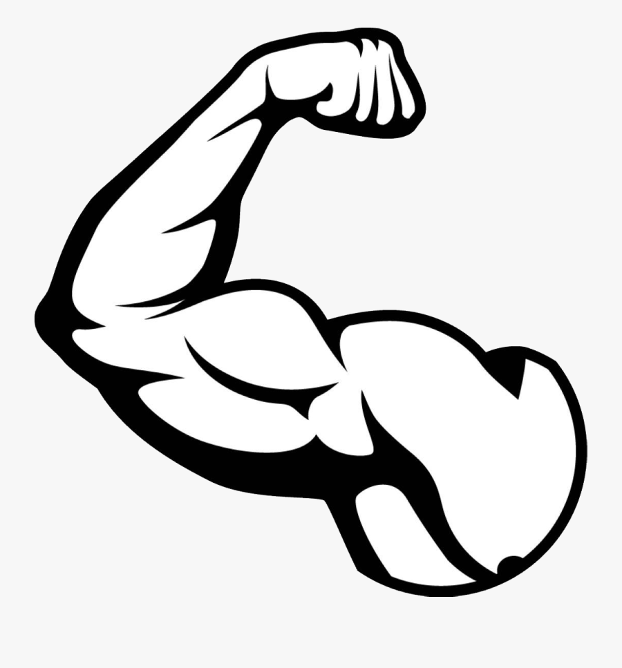 Muscle Arm Png Picture Muscles Clipart Black And.